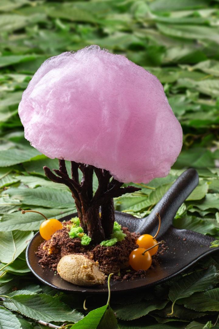 Авторский десерт «Райское дерево» от шеф-повара Алексея Павлова